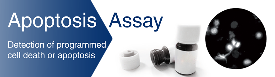 Apoptosis Assay Banner