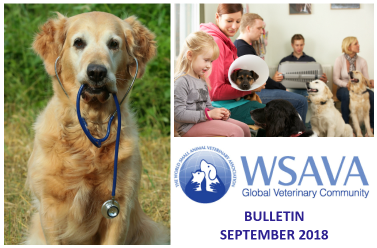 WSAVA Global Veterinary Community